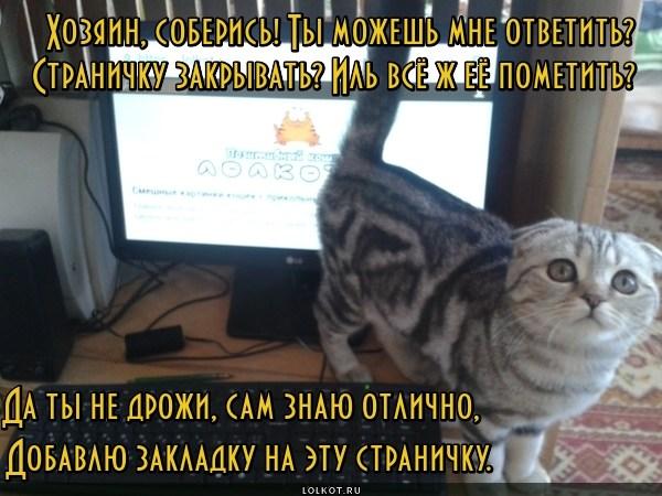 Специалист по интернету