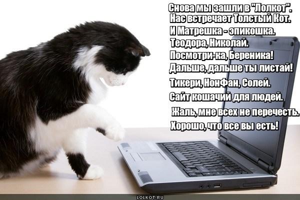 Лолкот.ру