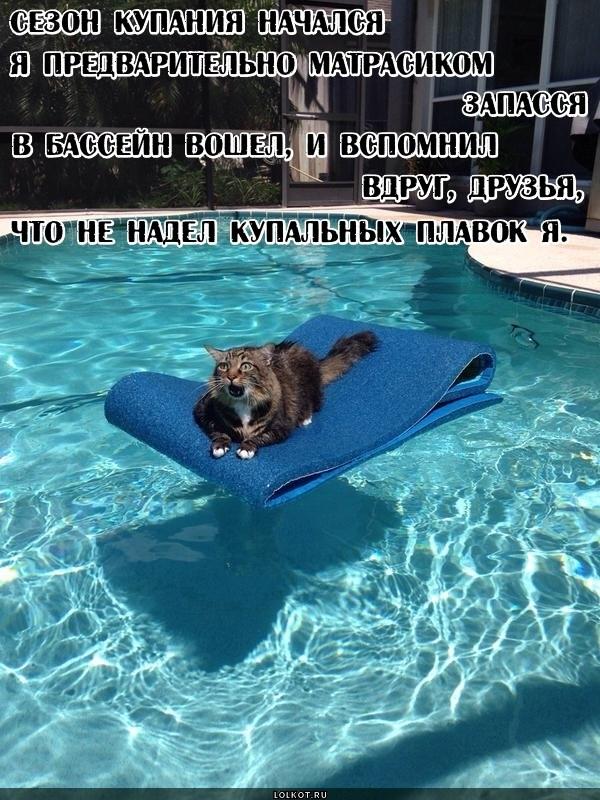 Сезон купания