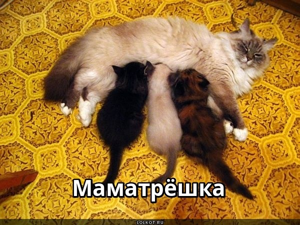 Трехместная мама