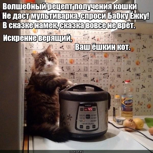 Рецепт ёшкиного кота