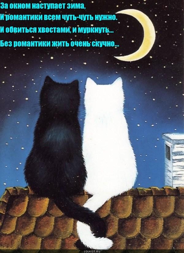 Снежная романтика