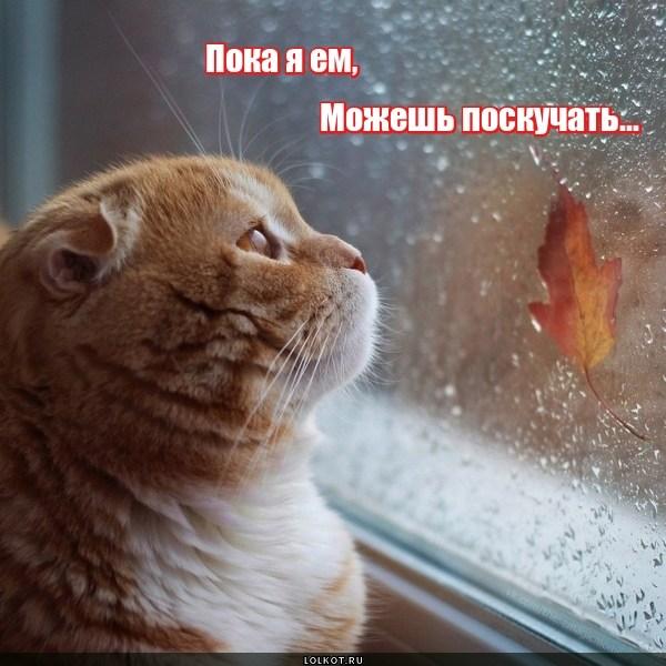 Никуда не уходи!