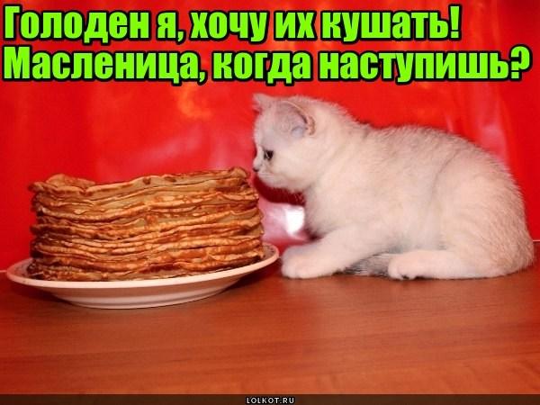 Масленичный голод