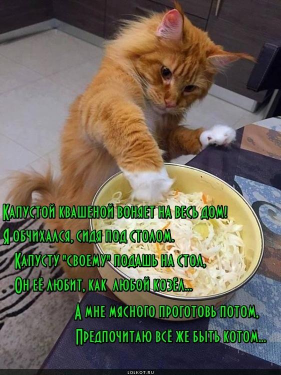 Козлу - козловье, коту - котовье