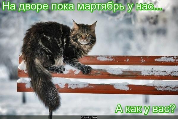 Мартябрь... Ветра, снега и депресняк (с)