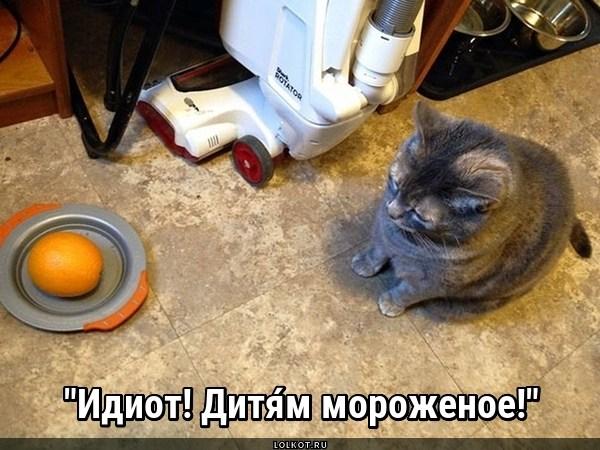 Слушай Лёлика!