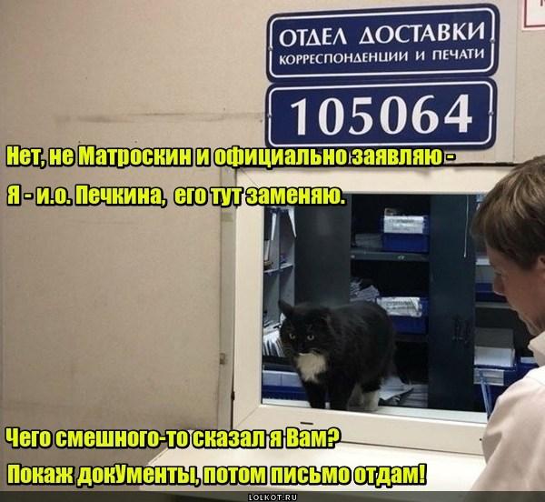 И.о. Печкина