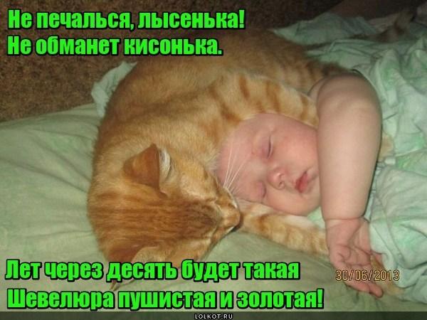 Коток-паричок