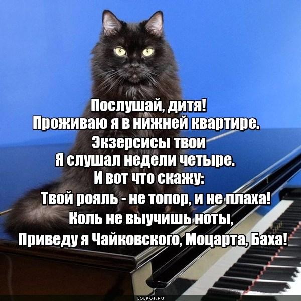 Музыкальный вкус