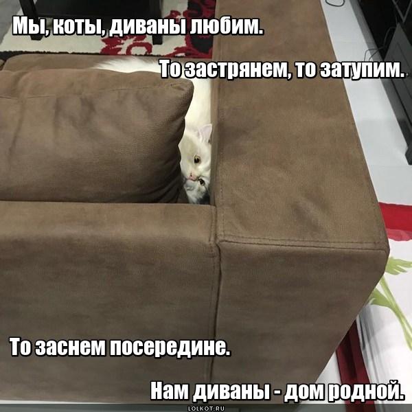 Диван обИтованный
