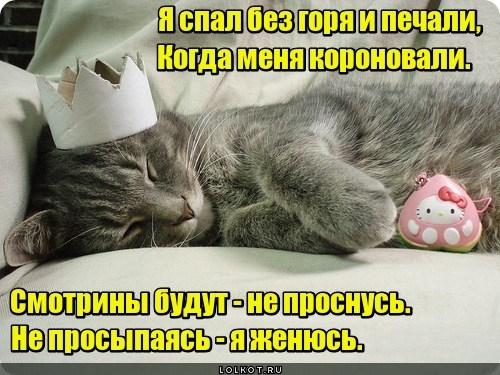 Сон про не сон, про не сон - сон (с)