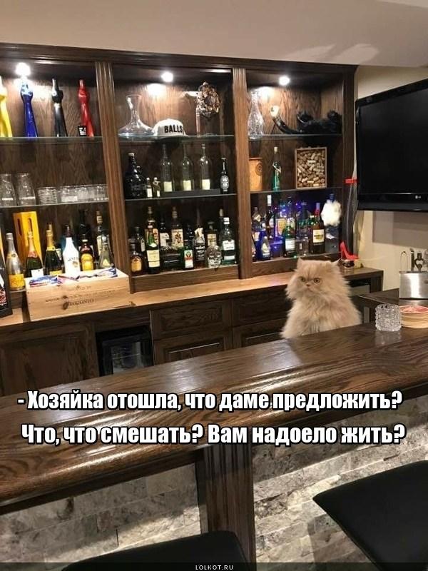 Убойный коктейль