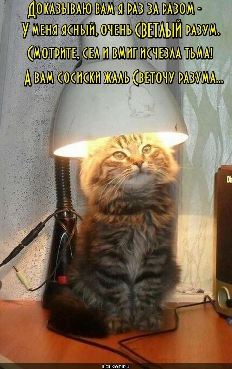 Сосисочный светоч