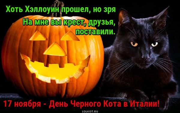 Кошачьи традиции