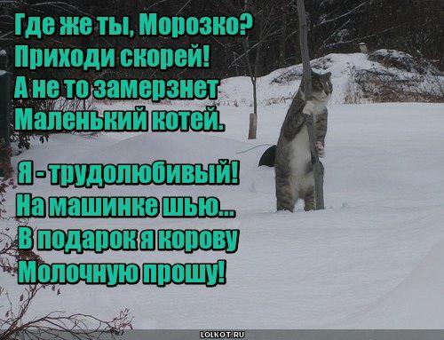 Морозковые просьбы
