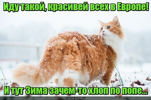 Зимний выхлоп