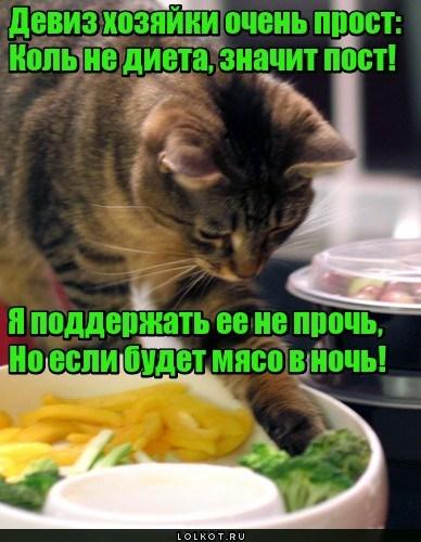 Обусловленная диета