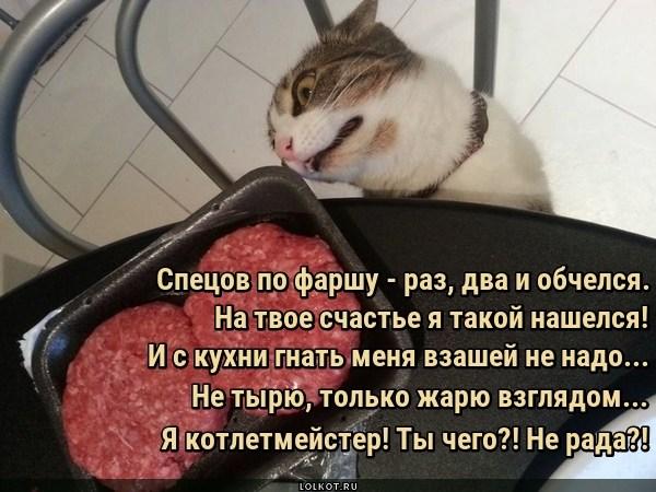 Котлетмейстер