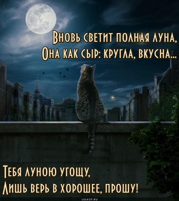 Лунное хорошее