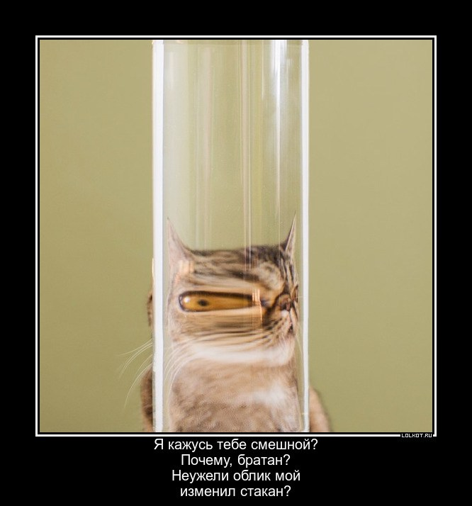 Исказительный стакан