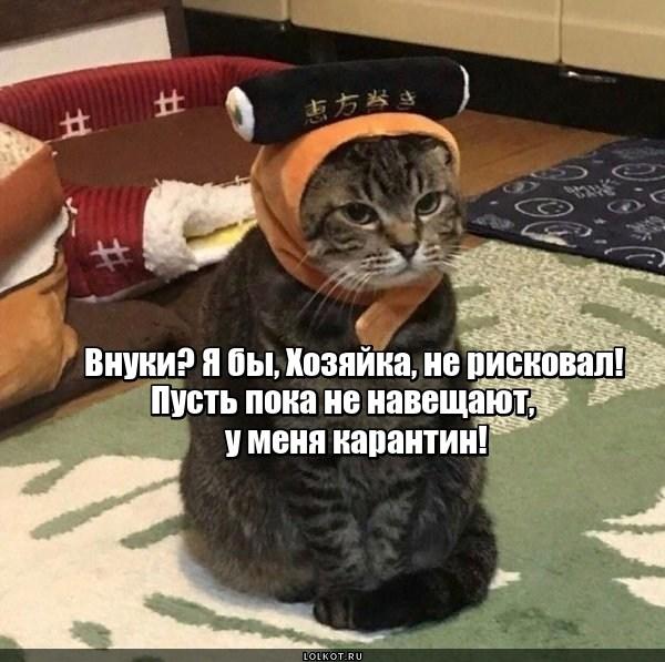 Противовнуковый карантин