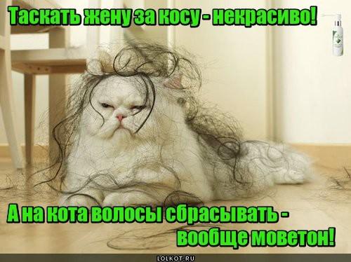 Домостроевский моветон