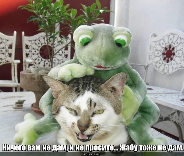 Дабл-жаба