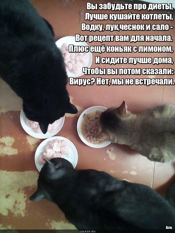 Домоседский рецепт