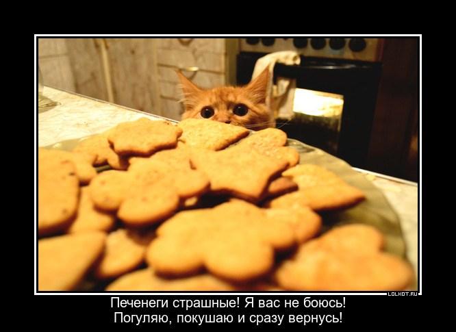 Нашествие печенег