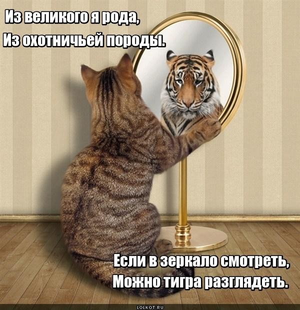 Великое отражение