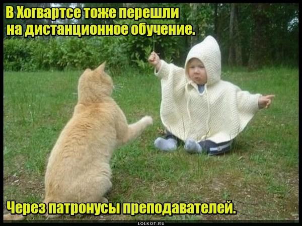 Волшебное обучение