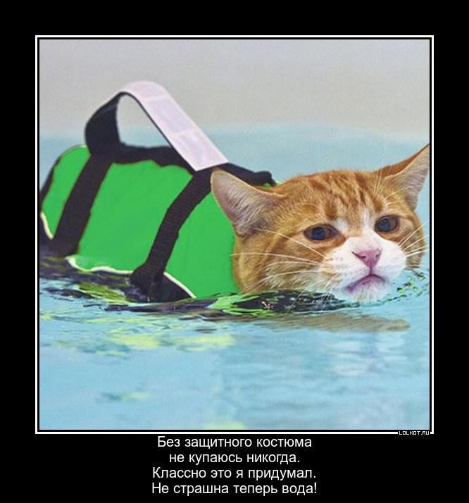 Нестрашное купание