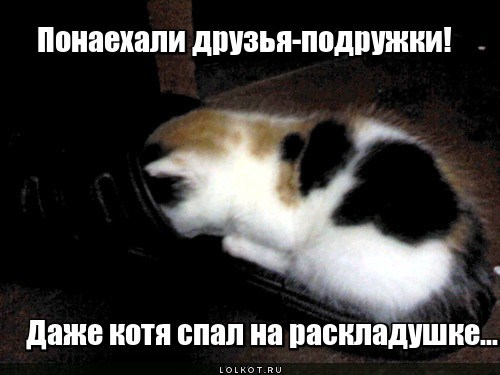 Полна хата огурцов (с)