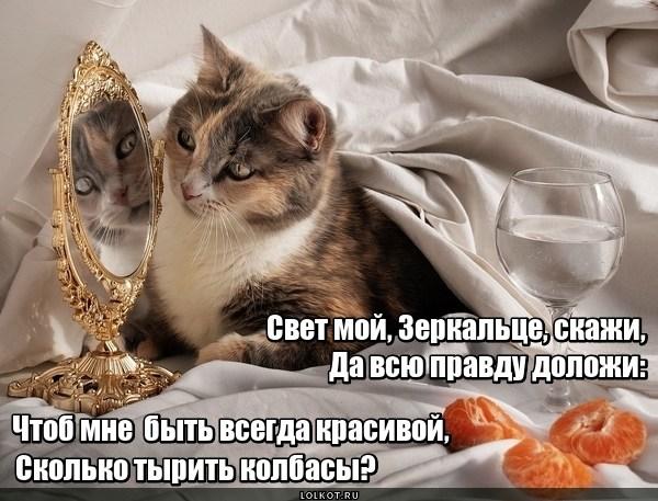 Зеркальное пророчество