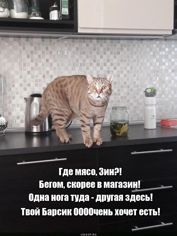 Где мясо, Зин?!