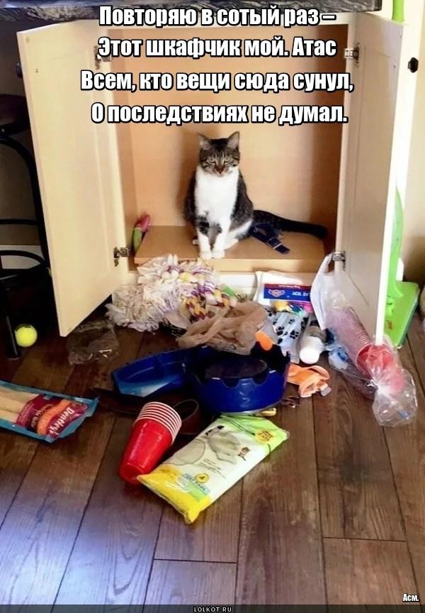 Опасный шкафчик
