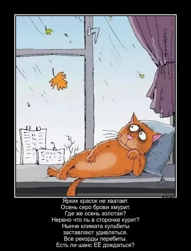Осенний ожидатель